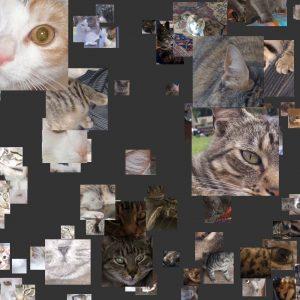 Pets Mosaic Animations